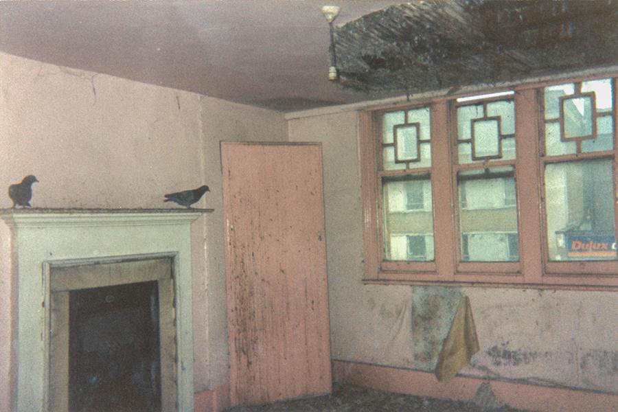 w Stonhouse empty-pigeons
